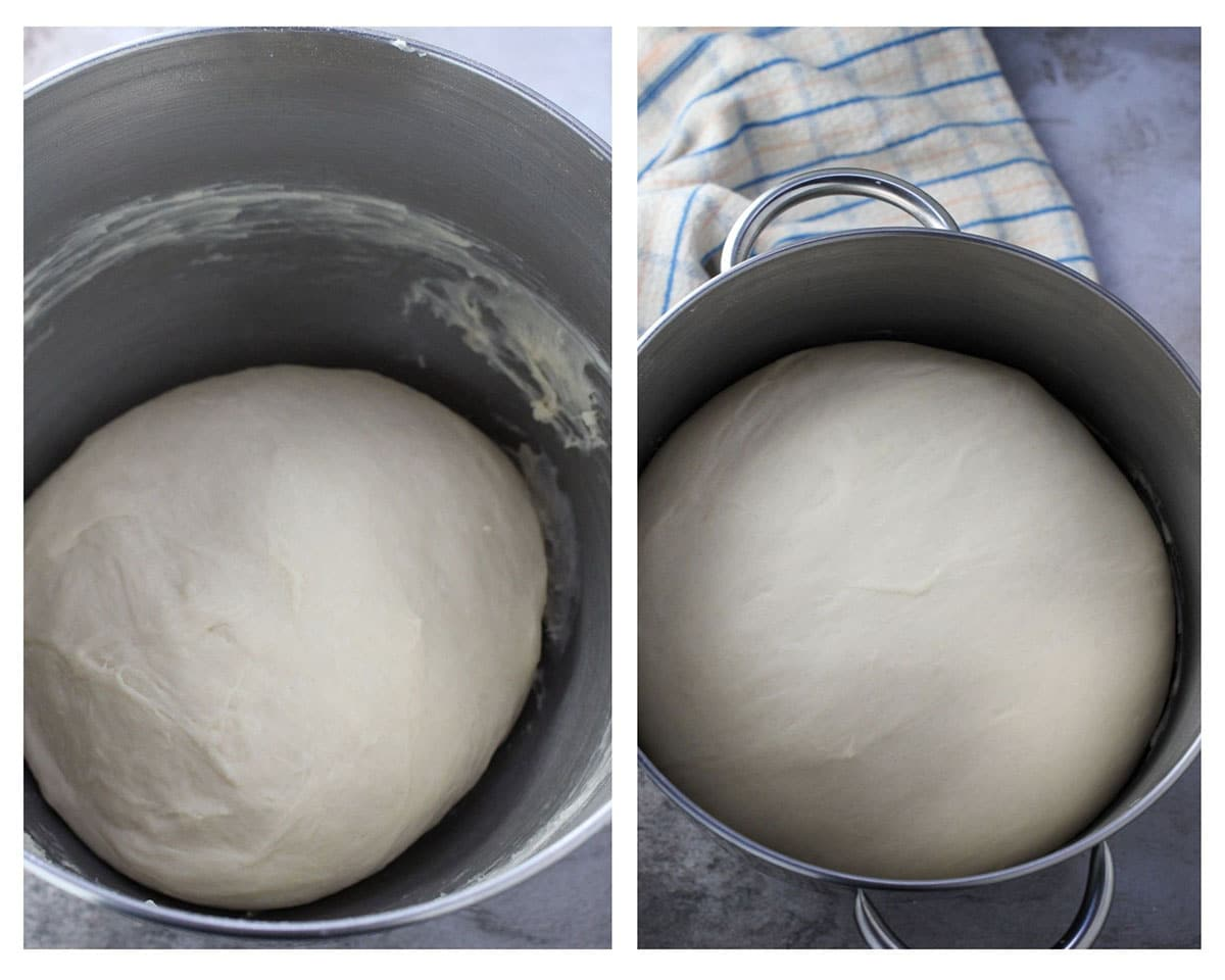 The kneaded dough (before and after first rise).