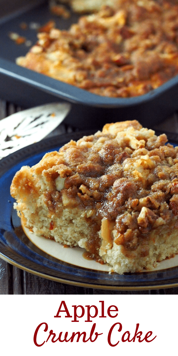 Soft, delicate cake, and crunchy, buttery top, this Apple Crumb Cake is an ultimately delicious dessert filled with tender-crisp apples flavored with a touch of cinnamon. #applecake #applecrisp #appledesserts