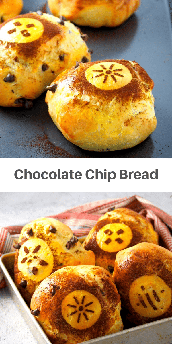 Delightful bread with chocolate chips inside and dusted with cocoa powder- They are great on their own or toasted with a spread of butter or jam. #chocolatechips #bread #chocolateloaf #chocobread | Woman Scribbles