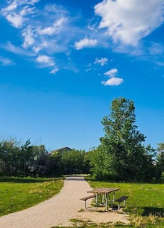 A photo of a park road.